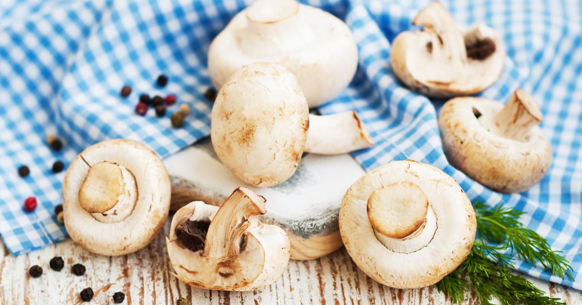 champignon nährwerte
